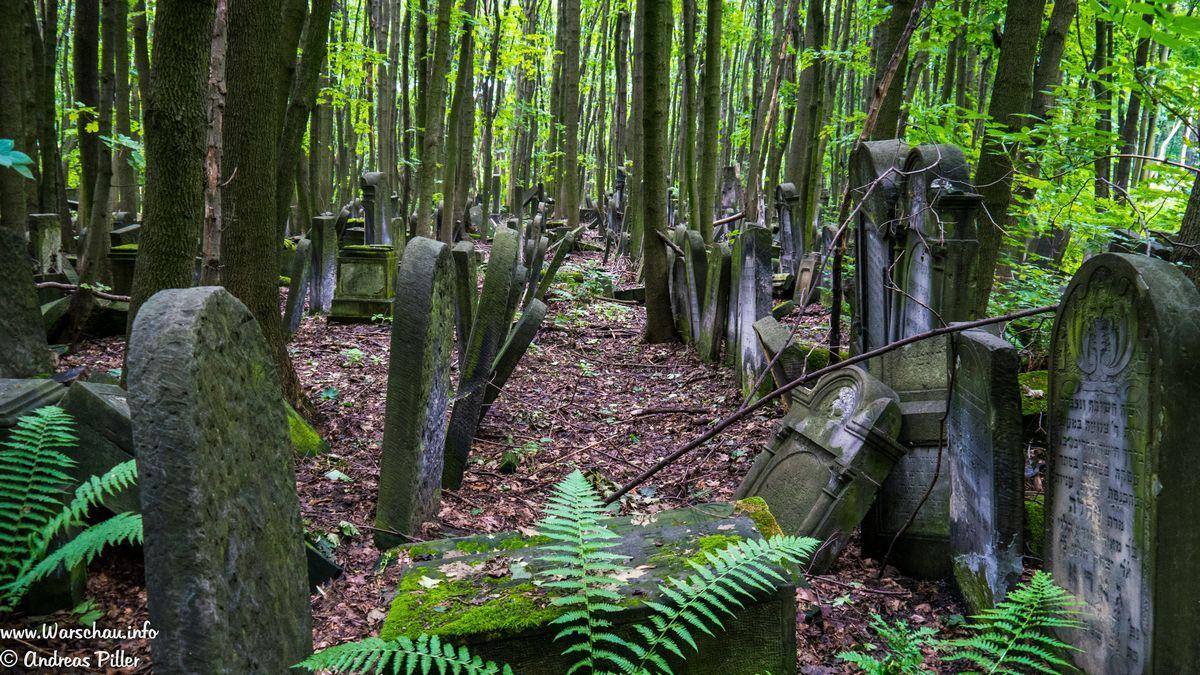 Jüdischer Friedhof Warschau